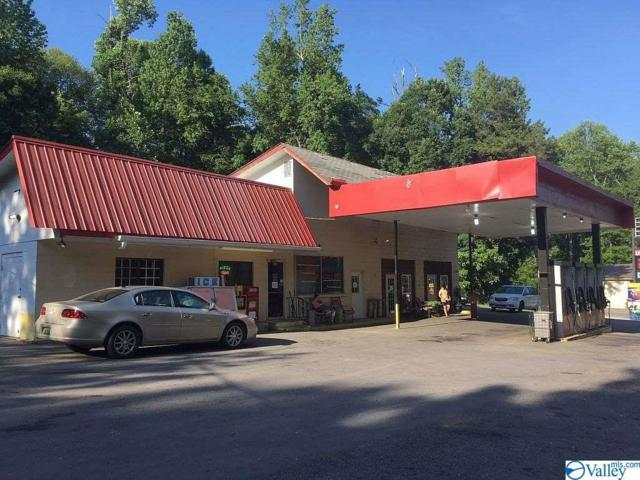 6010 Alabama Hwy 117, Mentone, AL 35984 (MLS #1119821) :: The Pugh Group RE/MAX Alliance