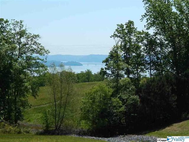 Lot 6 Legendary Drive, Guntersville, AL 35976 (MLS #1120068) :: Capstone Realty