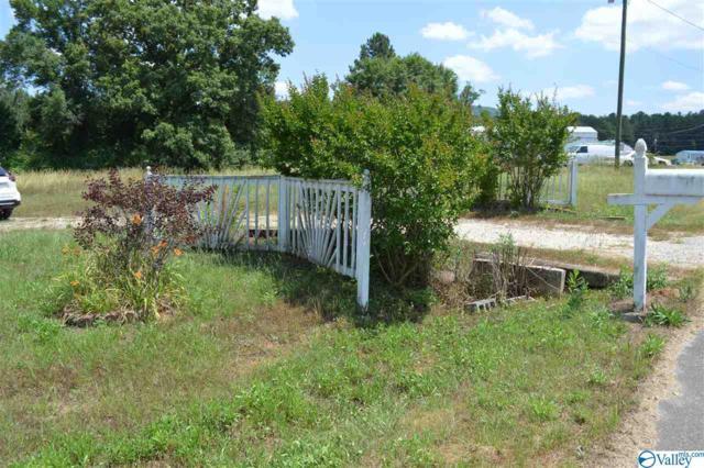 51 Roberts Chapel Road, Piedmont, AL 36272 (MLS #1120318) :: Amanda Howard Sotheby's International Realty