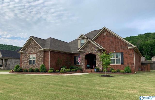 2004 Meadow Creek Circle, Owens Cross Roads, AL 35763 (MLS #1120321) :: Intero Real Estate Services Huntsville