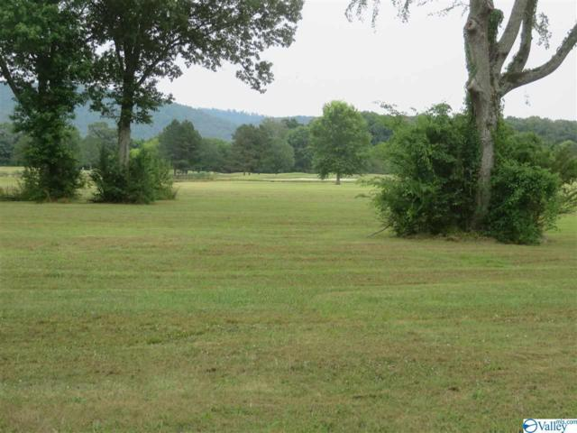 Lot 199 Plantation Pointe Road, Scottsboro, AL 35768 (MLS #1120484) :: Intero Real Estate Services Huntsville