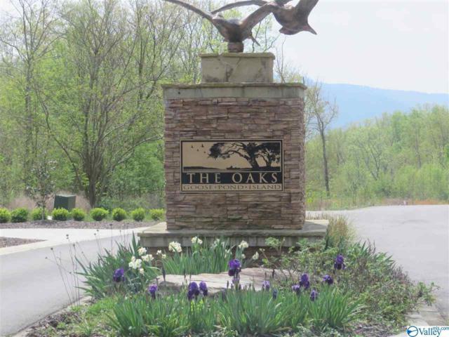 219 Redstone Drive, Scottsboro, AL 35769 (MLS #1120485) :: Intero Real Estate Services Huntsville