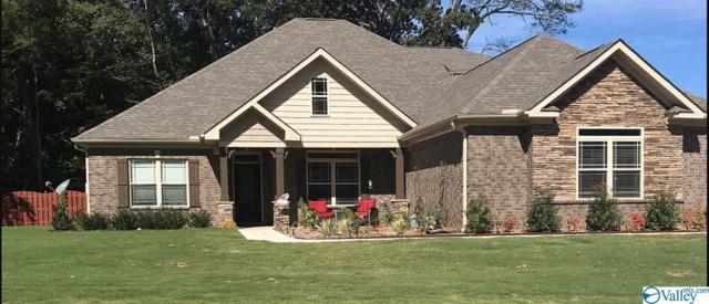 149 N Carlton Cash Drive, Hazel Green, AL 35750 (MLS #1120486) :: Intero Real Estate Services Huntsville