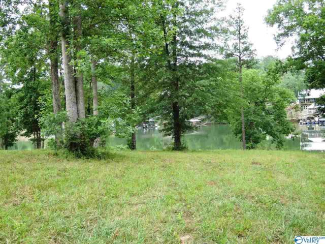 84 Bullbranch Drive, Double Springs, AL 35553 (MLS #1120655) :: Capstone Realty
