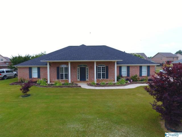 30252 Hardiman Place, Madison, AL 35756 (MLS #1120720) :: Intero Real Estate Services Huntsville