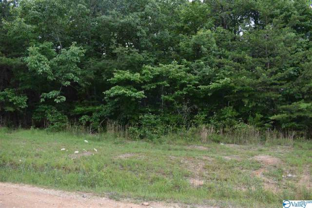 lot 30 County Road 1025, Fort Payne, AL 35967 (MLS #1120861) :: MarMac Real Estate