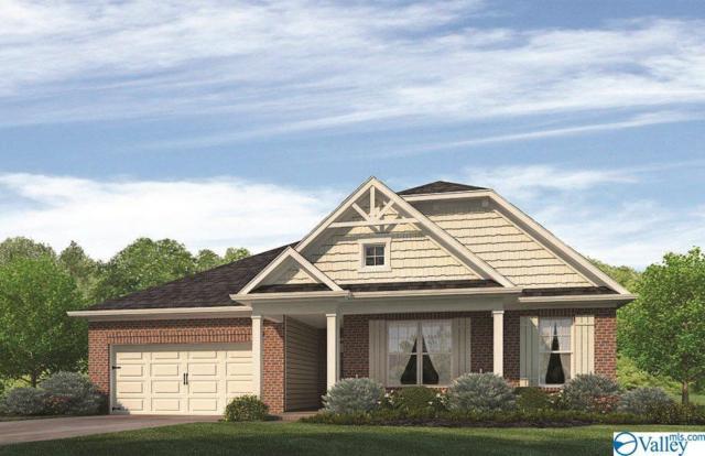 24391 Ransom Spring Drive, Athens, AL 35613 (MLS #1120939) :: Intero Real Estate Services Huntsville