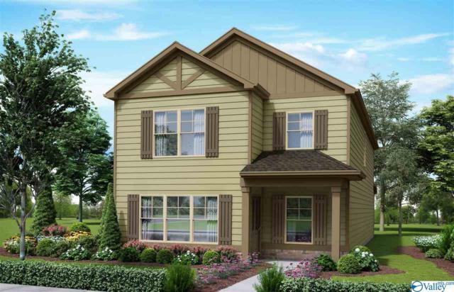 7602 Ashor Drive, Huntsville, AL 35806 (MLS #1121099) :: Capstone Realty