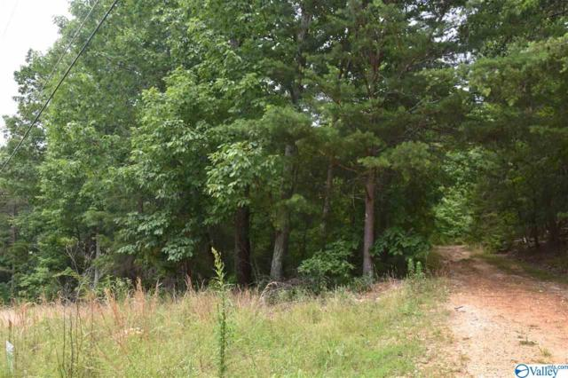 L5 Lynn Drive, Fort Payne, AL 35967 (MLS #1121160) :: The Pugh Group RE/MAX Alliance