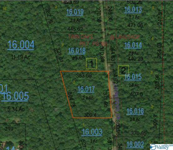 Road 935, Mentone, AL 35984 (MLS #1121175) :: Intero Real Estate Services Huntsville