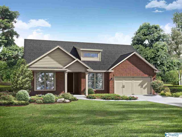 163 Willow Bank Circle, Priceville, AL 35603 (MLS #1121204) :: Amanda Howard Sotheby's International Realty