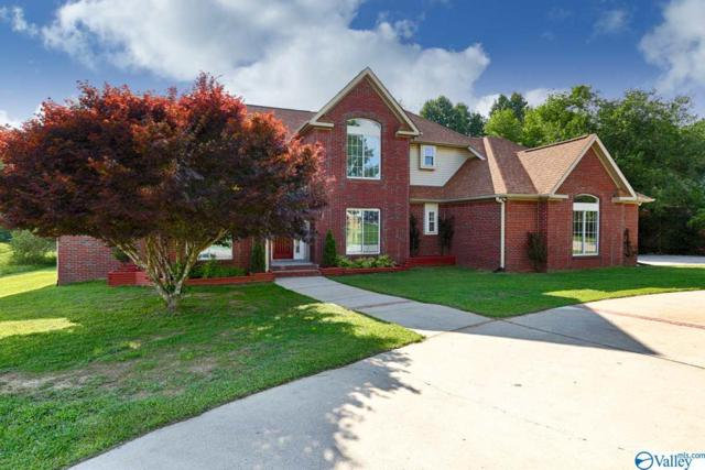 128 Mose Chapel Road, Madison, AL 35758 (MLS #1121418) :: Intero Real Estate Services Huntsville