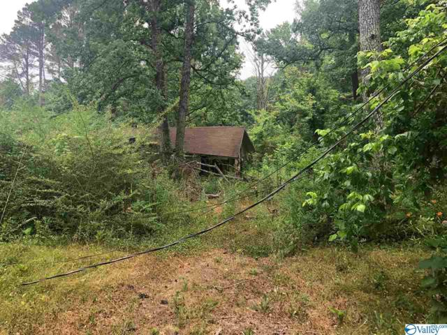 295 Whitaker Drive, Grant, AL 35747 (MLS #1121526) :: Amanda Howard Sotheby's International Realty