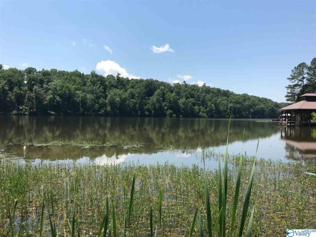 0 Golden Pond Road, Ashville, AL 35953 (MLS #1121580) :: Amanda Howard Sotheby's International Realty