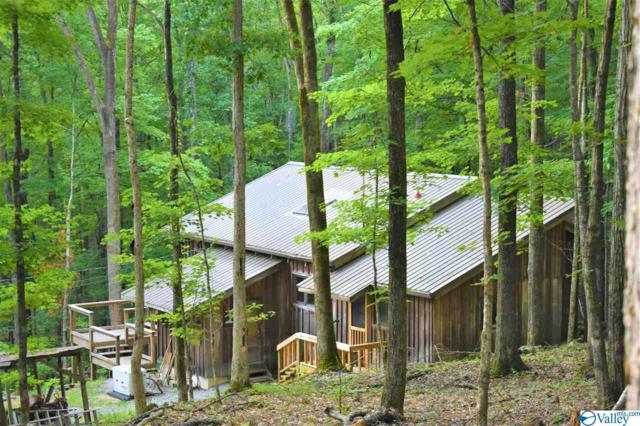 155 Nance Mountain Road, Gurley, AL 35748 (MLS #1121745) :: The Pugh Group RE/MAX Alliance