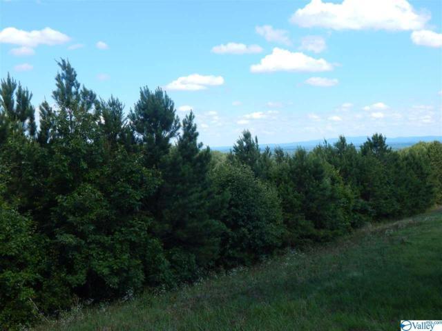71 County Road 767, Cedar Bluff, AL 35959 (MLS #1121780) :: RE/MAX Distinctive | Lowrey Team