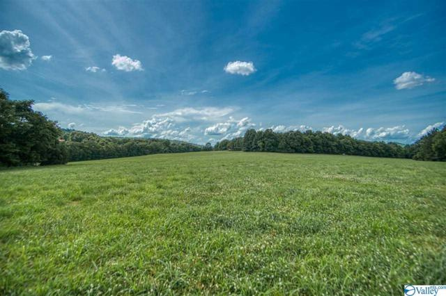 243 Delina Boonshill Road, Petersburg, TN 37144 (MLS #1121865) :: Legend Realty