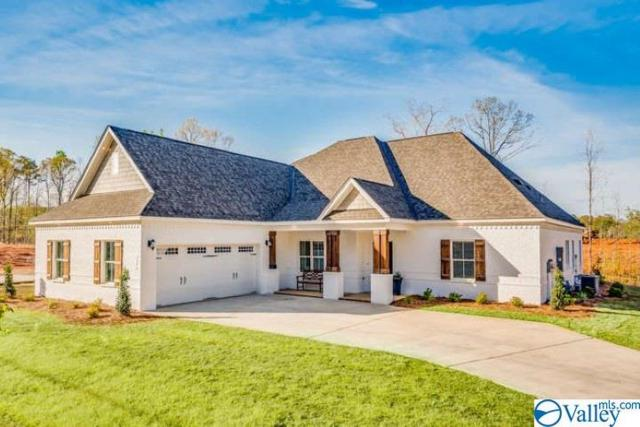 207 Pumprock Drive, Huntsville, AL 35806 (MLS #1121953) :: Capstone Realty