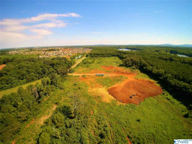 545 Zierdt Road, Madison, AL 35756 (MLS #1122084) :: Intero Real Estate Services Huntsville
