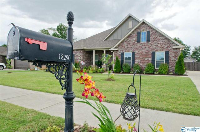 18290 Red Tail Street, Athens, AL 35613 (MLS #1122471) :: RE/MAX Distinctive | Lowrey Team