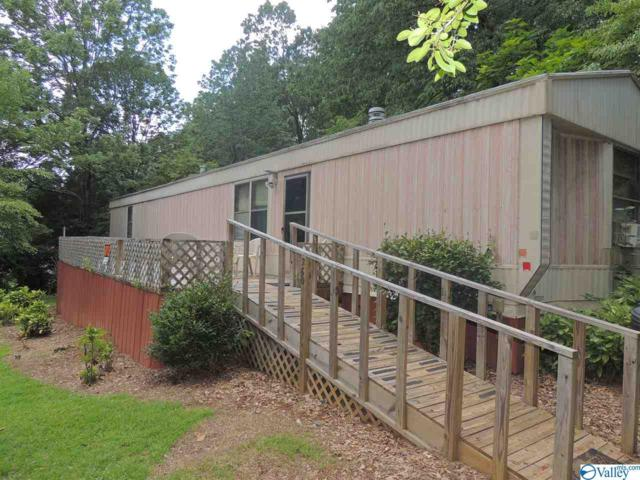 260 Embos Circle, Leesburg, AL 35983 (MLS #1122572) :: RE/MAX Distinctive | Lowrey Team