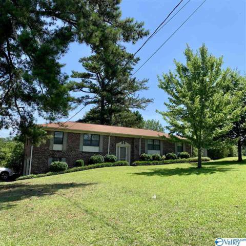 407 Lenford Avenue, Glencoe, AL 35905 (MLS #1122640) :: Capstone Realty