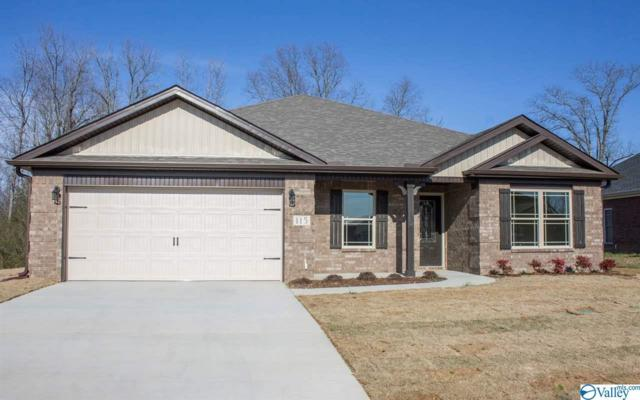 18 Heritage Way, Toney, AL 35773 (MLS #1122733) :: Amanda Howard Sotheby's International Realty