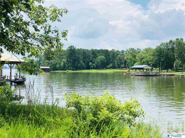 1250 County Road 642, Cedar Bluff, AL 35959 (MLS #1122764) :: Amanda Howard Sotheby's International Realty