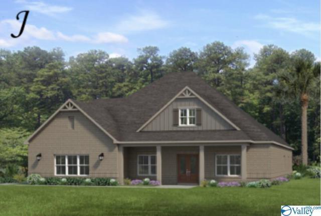 107 Willow Lake Circles, Huntsville, AL 35824 (MLS #1122951) :: Amanda Howard Sotheby's International Realty