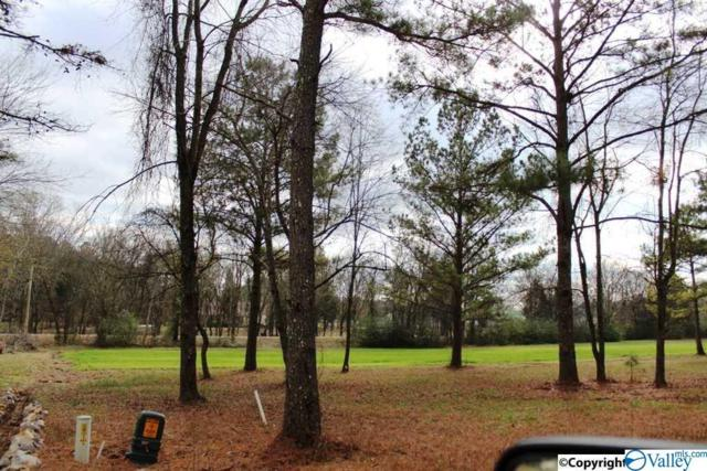 00 Cade Circle, Leesburg, AL 35983 (MLS #1123015) :: Coldwell Banker of the Valley