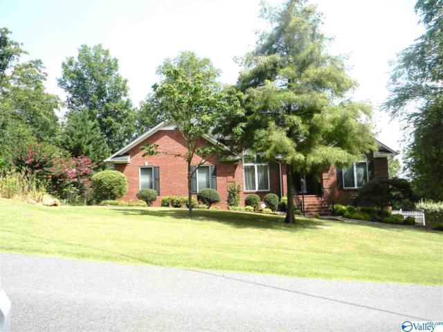 5368 Mountain Top Drive, Southside, AL 35907 (MLS #1123031) :: Capstone Realty