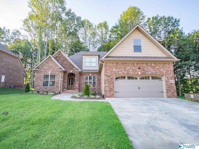 29241 Carnaby Lane, Toney, AL 35773 (MLS #1123049) :: Amanda Howard Sotheby's International Realty