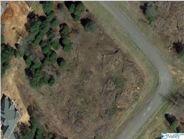 0 Dale Street, Scottsboro, AL 35769 (MLS #1123073) :: Intero Real Estate Services Huntsville