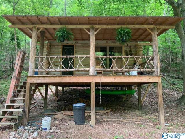 781 County Road 283, Collinsville, AL 35961 (MLS #1123098) :: Capstone Realty