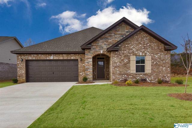 104 Sherwin Avenue, Huntsville, AL 35806 (MLS #1123282) :: Intero Real Estate Services Huntsville