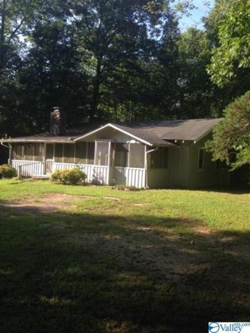 439 Cutler Avenue, Mentone, AL 35984 (MLS #1123288) :: Capstone Realty