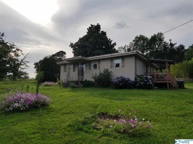 6461 Chandler Mountain Road, Steele, AL 35987 (MLS #1123326) :: Legend Realty