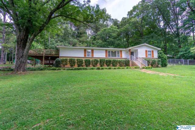 1750 Dug Hill Road, Brownsboro, AL 35741 (MLS #1123343) :: RE/MAX Distinctive | Lowrey Team