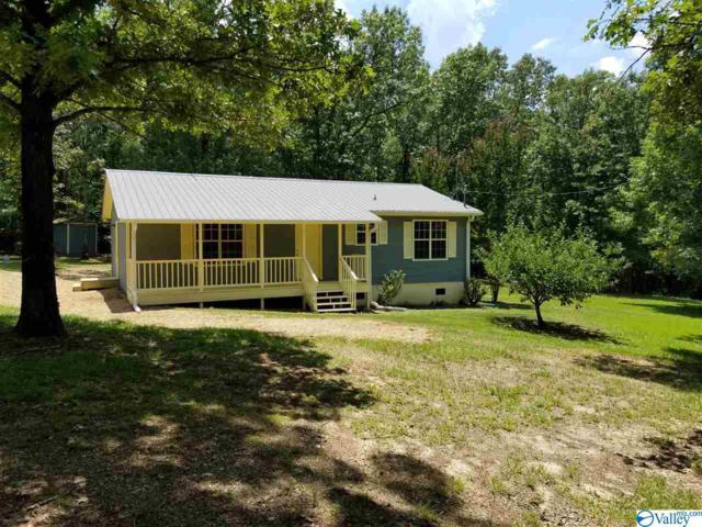 115 Canoe Drive, Ashville, AL 35953 (MLS #1123457) :: Legend Realty