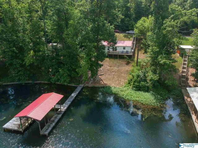 415 Pine Island Point, Scottsboro, AL 35769 (MLS #1123497) :: Amanda Howard Sotheby's International Realty