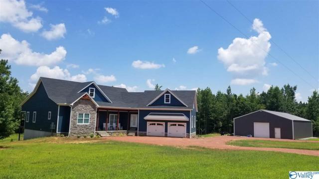 120 Braswell Road, Falkville, AL 35622 (MLS #1123546) :: Capstone Realty