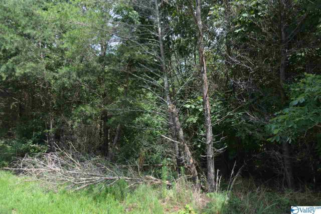 LOT #30 County Road 224, Dutton, AL 35744 (MLS #1123598) :: LocAL Realty