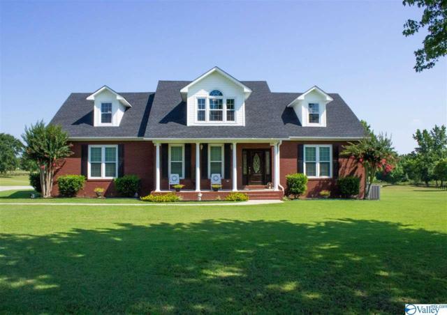 128 County Road 382, Decatur, AL 35603 (MLS #1123620) :: Amanda Howard Sotheby's International Realty