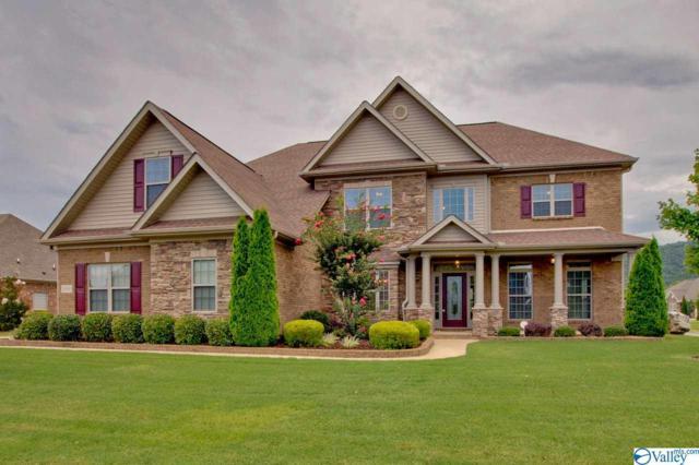 3000 Laurel Cove Way, Gurley, AL 35748 (MLS #1123641) :: Eric Cady Real Estate