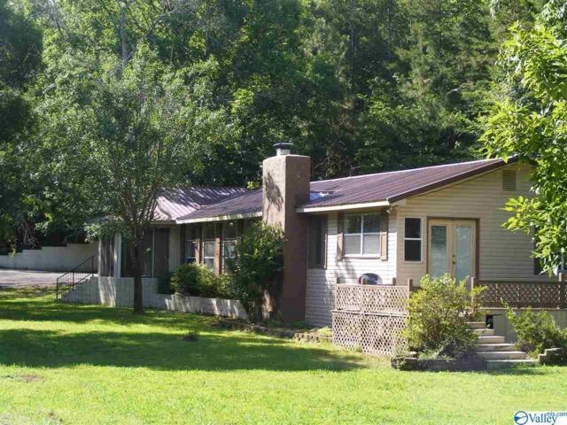 195 County Road 728, Cedar Bluff, AL 35959 (MLS #1123658) :: RE/MAX Distinctive | Lowrey Team