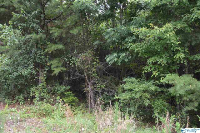 LOT #25 County Road 224, Dutton, AL 35744 (MLS #1123661) :: Capstone Realty