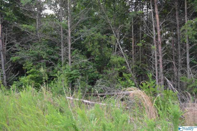 LOT #24 County Road 224, Dutton, AL 35744 (MLS #1123668) :: Capstone Realty