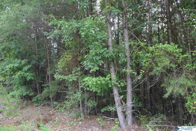 LOT # 23 County Road 224, Dutton, AL 35744 (MLS #1123670) :: RE/MAX Distinctive | Lowrey Team