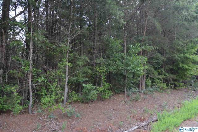 LOT #22 County Road 224, Dutton, AL 35744 (MLS #1123678) :: RE/MAX Distinctive | Lowrey Team