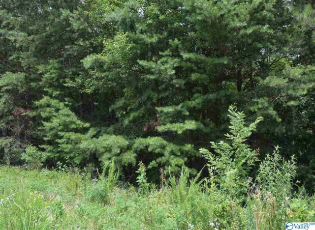 LOT 20 County Road 224, Dutton, AL 35744 (MLS #1123692) :: RE/MAX Distinctive | Lowrey Team